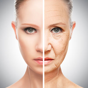 'Second Skin' Delivers Potential Fountain of Youth