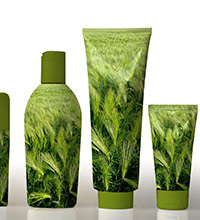 Beauty product bottles decorated with a green vegetation motif